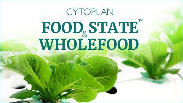 food state and wholefood